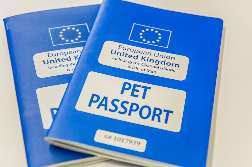 Pet Travel Scheme Uk